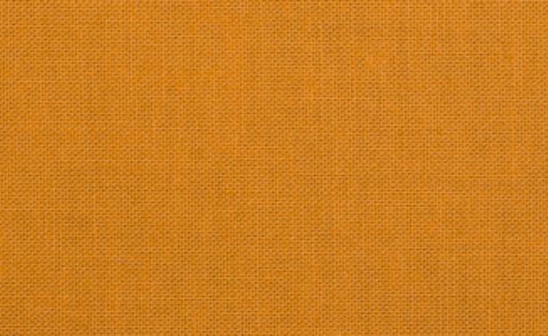 Classic Poplin Amber 036