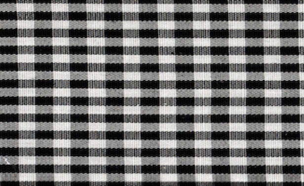 Gingham Black Small Edited