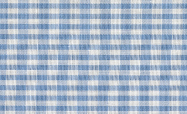 Gingham Light Blue Small Edited