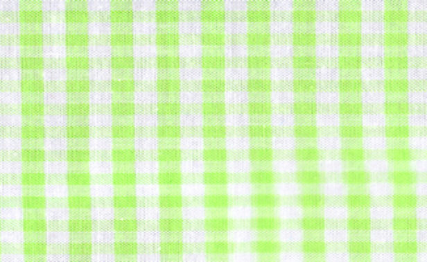 Gingham Lime Green Small Edited