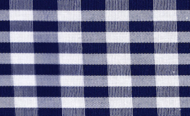 Gingham Navy Large Edited