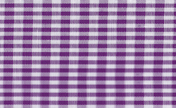 Gingham Purple Small Edited